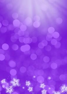 紫色梦幻圆点背景