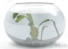 玻璃鱼缸3d模型