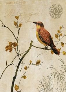 花卉油画背景
