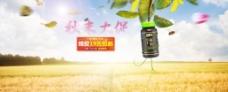淘宝蜂胶促销海报