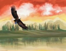 鹰油画图片