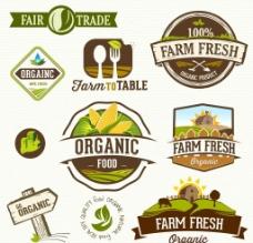 绿色农场图标图片