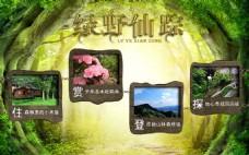 绿野仙踪海报