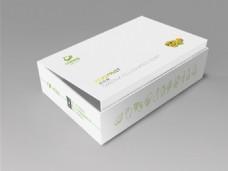 奇异果极简包装礼盒
