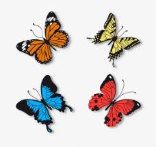 精致蝴蝶矢量图片