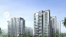 深圳滨福庭园 设计方案 DWG_0011