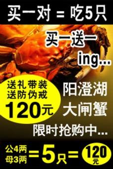 阳澄湖大闸蟹海报设计