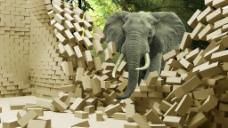 大象3D立体电视背景墙画jpg