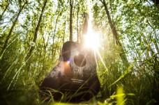 木吉他 乐器 吉他 音乐 阳光