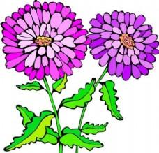 花朵 花草 鲜花 矢量 EPS格式_0018