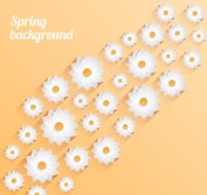 春天白色花卉背景矢量素材