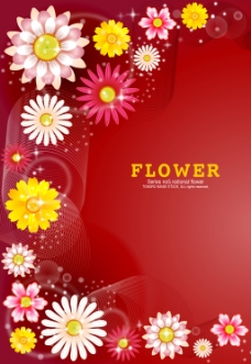 各种花款背景红色花语卡片