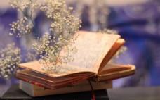 高清清新自然鲜花书本背景图片