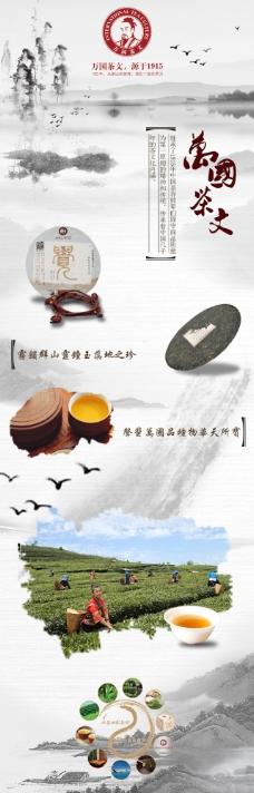 茶-详情页-平面