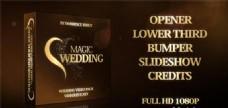 梦幻魔法婚礼包装动画AE模板