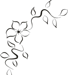 花怎么画简单好看