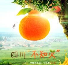 水果橘子活泼电商详情页