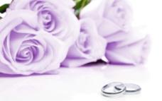 紫色玫瑰和戒指图片