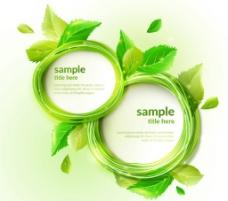 绿色圆形 树叶框架 背景图片