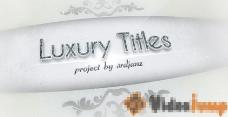 12个时尚钻石logo演绎栏目包装