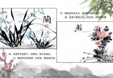 梅兰竹菊画册