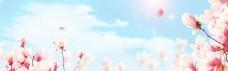 小清新蓝天粉色花朵背景