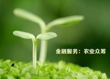 绿色环保公益宣传