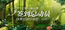 专题头图绿色森林背景