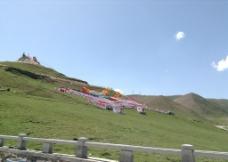 西藏平原草地图片