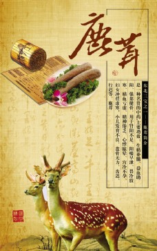 鹿茸药业古代宣传广告PSD素材