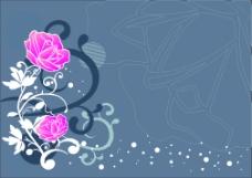 灰兰底玫瑰