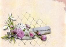 典雅花朵背景图片