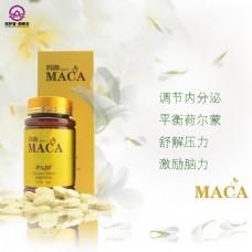 小清新玛咖宣传广告