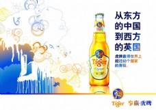 tiger啤酒海报