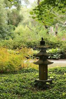 花园里的绿景