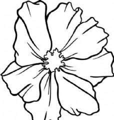 鲜花 花卉 矢量素材 eps格式_0013