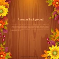 花和木的秋天背景