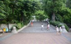 公园石梯图片