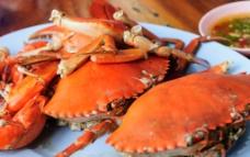海鲜食物大餐图片
