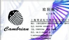 网络科技类 名片模板 CDR_2930