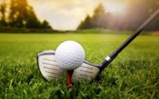 高尔夫运动高清图片
