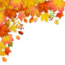 秋天枫叶花纹边框装饰矢量素材