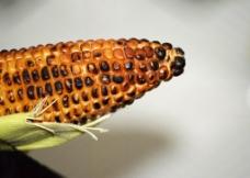 烤玉米图片