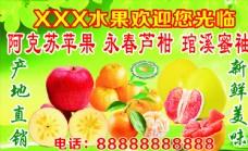 阿克苏苹果 永春芦柑 琯溪蜜袖图片