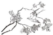 花与鸟图片