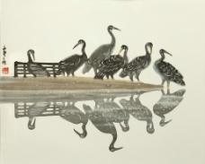 水鸟图图片