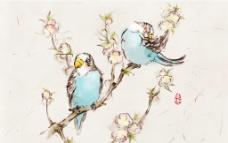 鸟与花图片