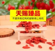 红枸杞想i全年工业