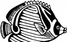 鱼 水中动物 矢量素材 eps格式_0029