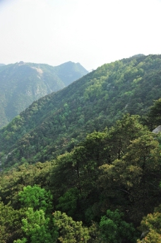 山区风景 山谷图片